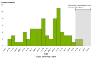 Chart showing bar graph indicating numbers of persons infected with the outbreak strains of Salmonella Heidelberg by week of illness onset