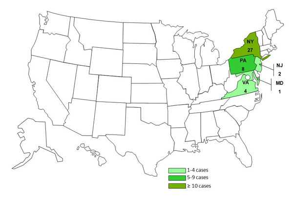 Persons infected with the outbreak strain of Salmonella Enteritidis, by state