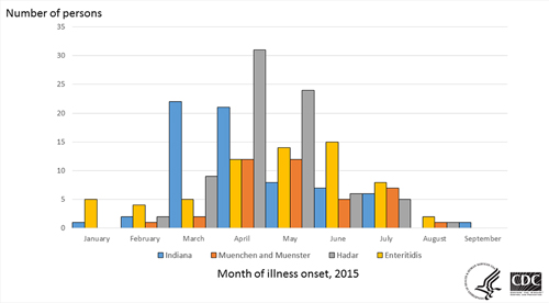 Persons infected with the outbreak strains of Salmonella Enteritidis, Hadar, Indiana, Muenchen, or Muenster, by month of illness onset