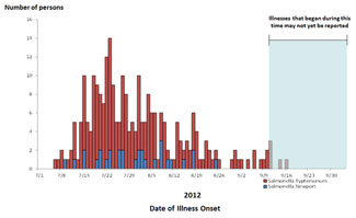 Final Epi Curve: Persons infected with the outbreak strains of Salmonella Typhimurium and Salmonella Newport, by date of illness onset
