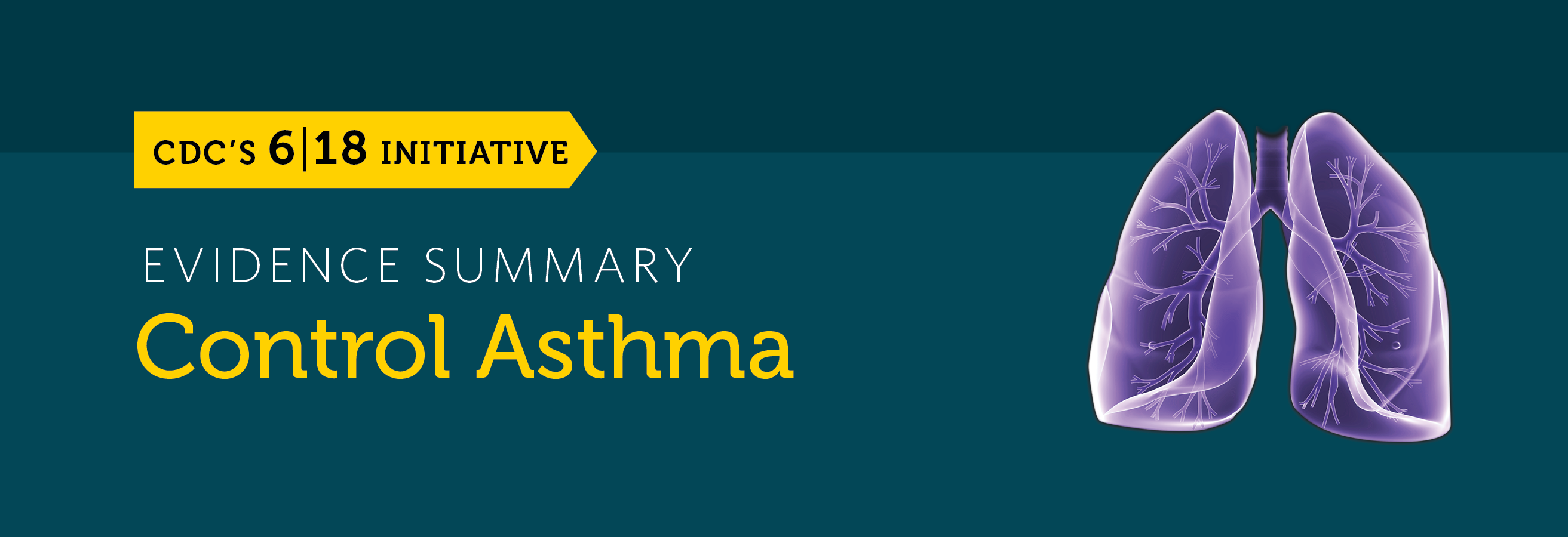 The control asthma evidence summary banner.