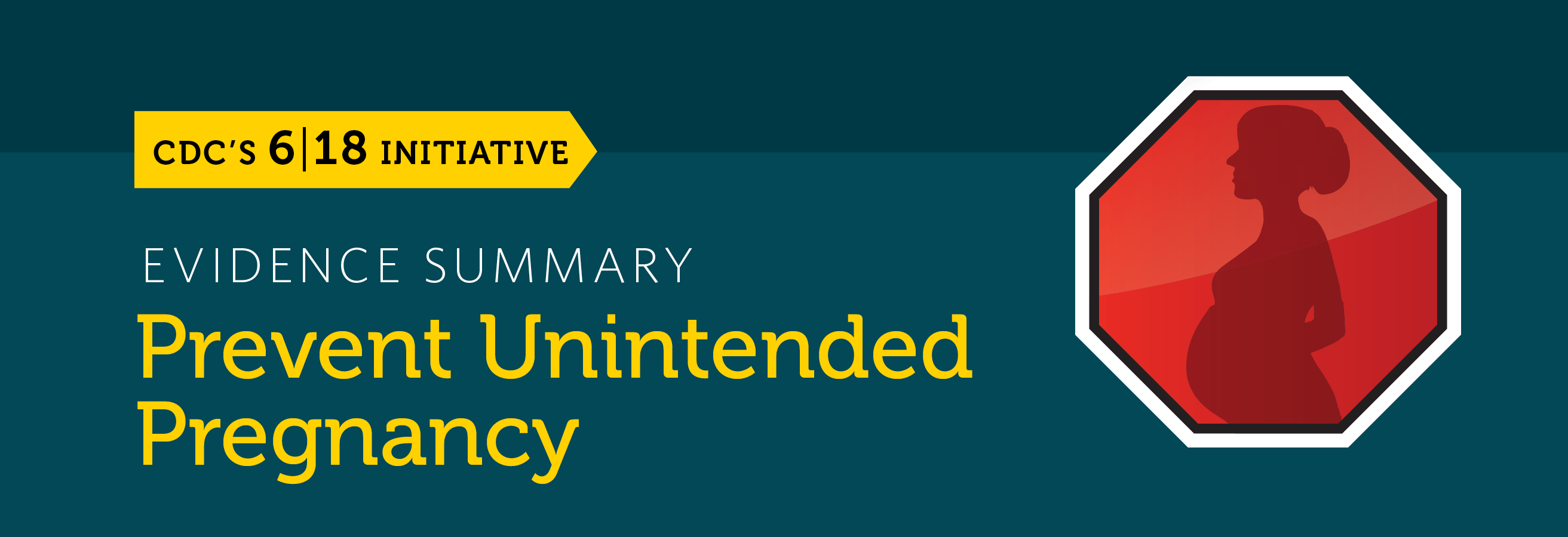 The prevent unintended pregnancy evidence summary banner.