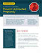 prevent unintended pregnancy pdf cover icon