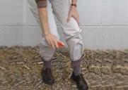 Imagen de pantalones largos metidos en las medias