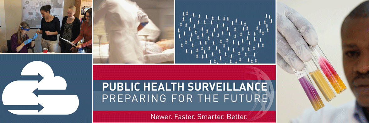 Cover of Public Health Surveillance: Preparing for the Future