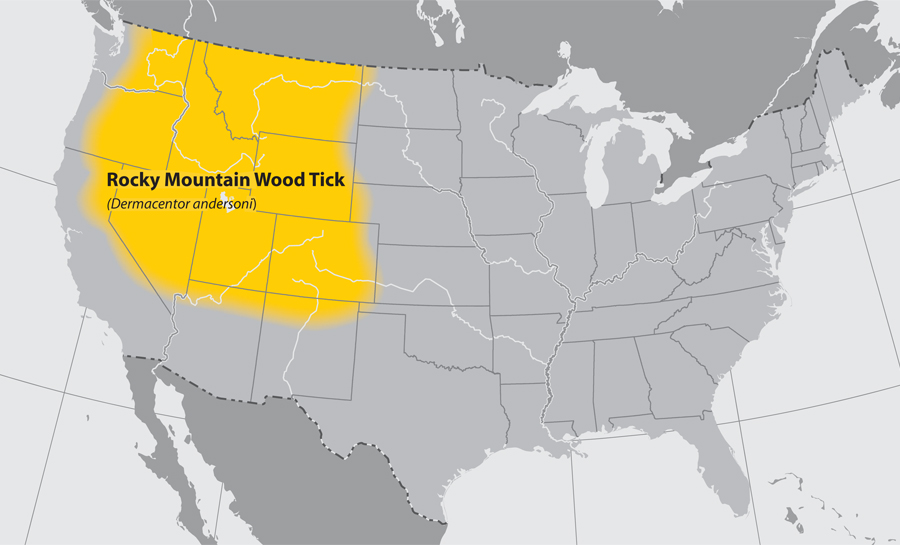 Map of the United States showing the approximate distribution of the Rocky mountain wood tick.  The area effected is the Northwestern part of the country.