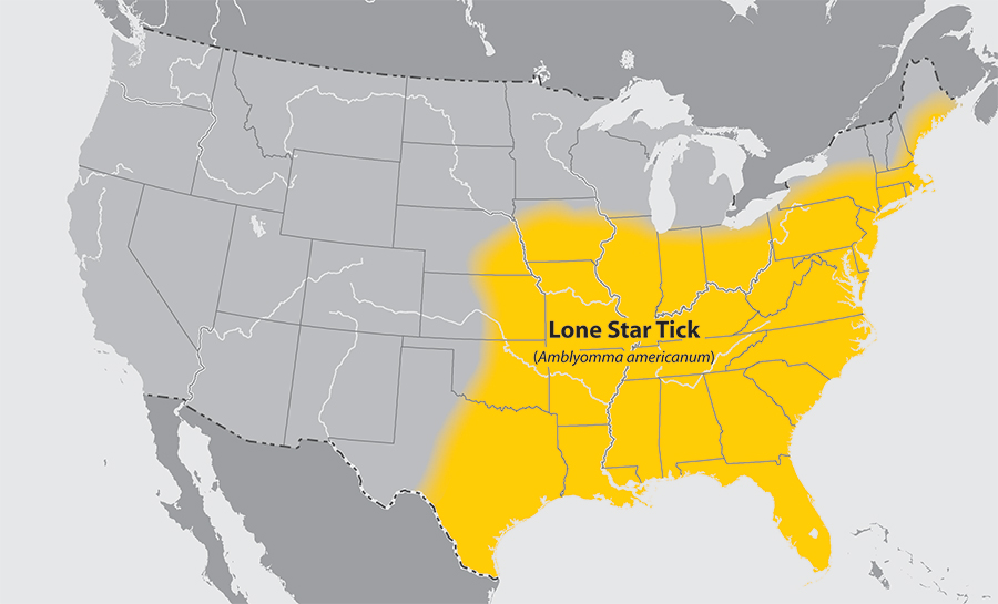 Approximate distribution of the Lone Star tick