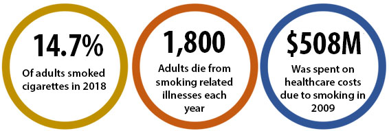 14.3% of adults smoked cigarettes in 2017; 1,800 adults die from smoking-related illnesses each year; $508M was spent on healthcare costs due to smoking in 2009