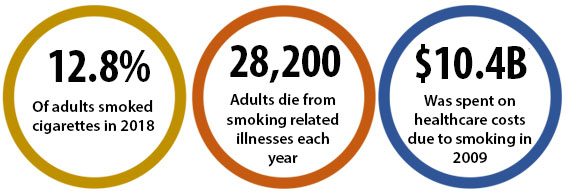 12.8% of adults smoked cigarettes in 2018; 28,200 adults die from smoking-related illnesses each year; $10.4B was spent on healthcare costs due to smoking in 2009