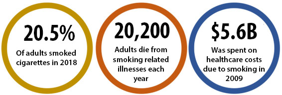 20.5% of adults smoked cigarettes in 2018; 20,200 adults die from smoking-related illnesses each year; $5.6B was spent on healthcare costs due to smoking in 2009