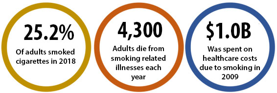 26.0% of adults smoked cigarettes in 2017; 4,300 adults die from smoking-related illnesses each year; $1.0B was spent on healthcare costs due to smoking in 2009