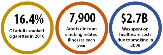 16.4% of adults smoked cigarettes in 2018; 7,900 adults die from smoking-related illnesses each year; $2.7B was spent on healthcare costs due to smoking in 2009