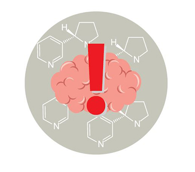 Nicotine can harm the developing adolescent brain.  The brain keeps developing until about age 25.  There is an illustration of a brain with an exclamation point.