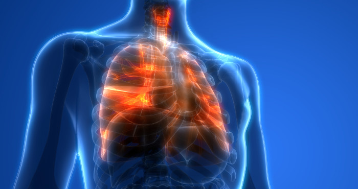 Translucent human figure with lungs highlighted