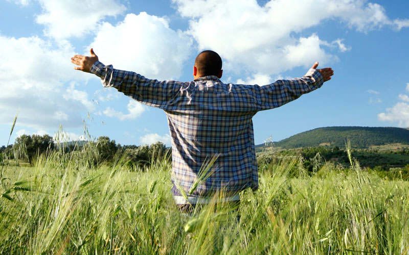 Happy man in a field with his arms raised with blue sky and clouds