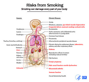 Damages Of Smoking Cigarettes