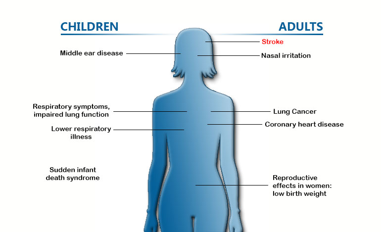 Cdc  Fact Sheet  Health Effects Of Secondhand Smoke  Smoking  Diagram Showing The Effects Of Secondhand Smoke In Children Middle Ear  Disease Respiratory Business Strategy Essay also Persuasive Essays Examples For High School  High School Vs College Essay