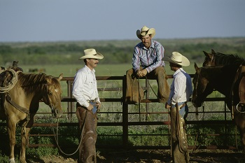 Rural photo of cowboys talking