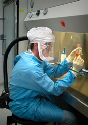 Man is wearing a powered air purifying respirator, gloves, and solid-front gown. He is working within a BSC, and self-closing, locked doors are in the background.