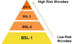 Pyramid showing the four BSLs with the lowest risk microbes at the bottom, representing BSL-1, and the highest risk microbes at the top, representing BSL-4.