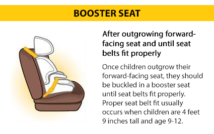 Once children outgrow their forward-facing seat, they should be buckled in a belt positioning booster seat until seat belts fit properly. Seat belts fit properly when the lap belt lays across the upper thighs (not the stomach) and the shoulder belt lays across the chest (not the neck). Proper seat belt fit usually occurs when children are about 4 feet 9 inches tall and age 9-12 years.
