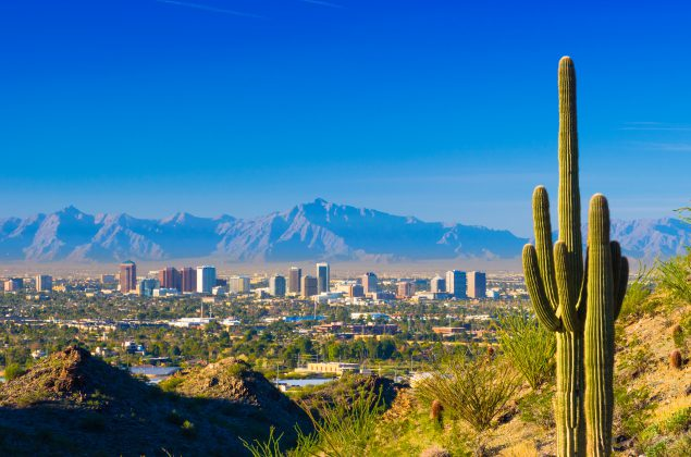 Phoenix midtown skyline with a Saguaro Cactus and other desert scenery in the foreground