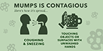 This infographic details the symptoms of mumps, how it is spread, and how it can be prevented – the MMR vaccine. Learn more about this serious disease.