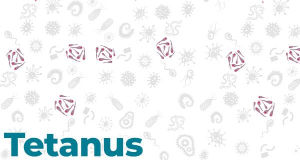 Vaccine (Shot) for Tetanus | CDC