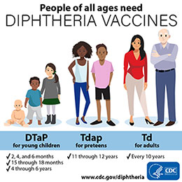 Graphic depicting young children, preteens, and adults, all of which need diphtheria vaccines.