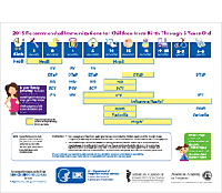See CDC Immunization Schedule
