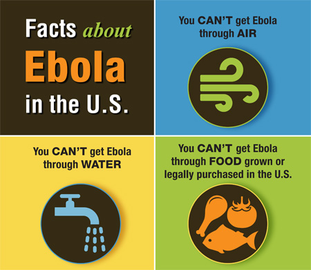 Fact about Ebola Virus infographic