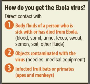 Infographic: Ebola Basics