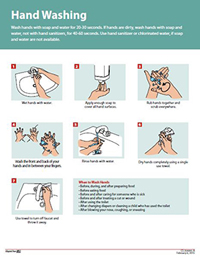 Poster: How to Wash Hands