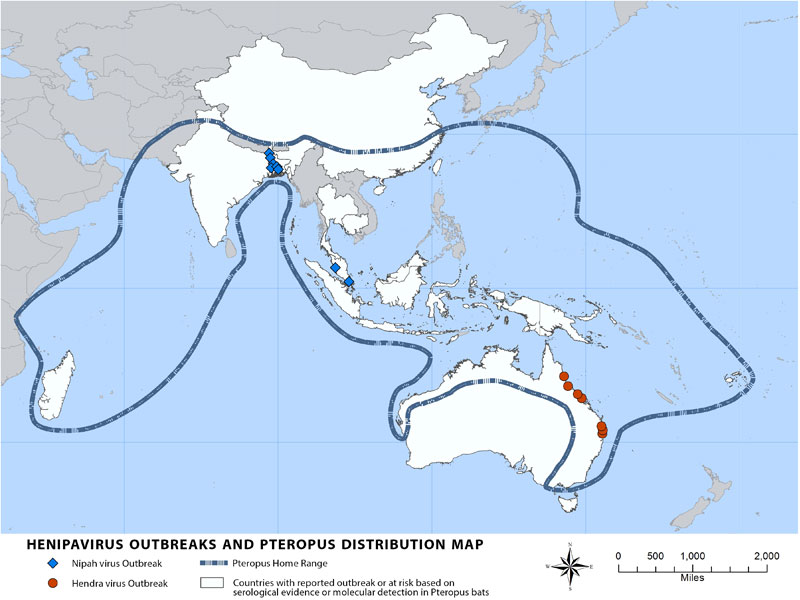 Nipah Virus Distribution Map | Nipah Virus (NiV) | CDC on