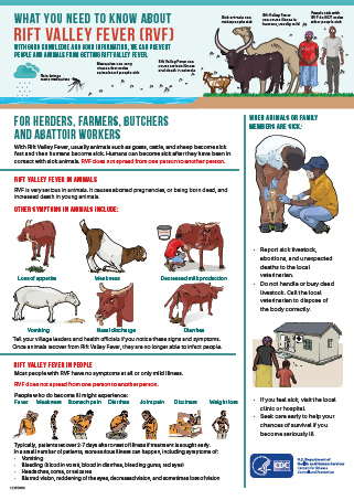 RVF Information For Herders, Farmers, Butchers and Abbatoir Workers poster