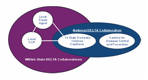 National DELTA Collaboration - Within State DELTA Collaborations, described above