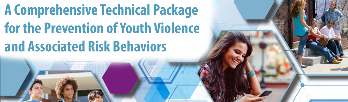 Technical Package for the Youth Violence and Associated Risk Behaviors