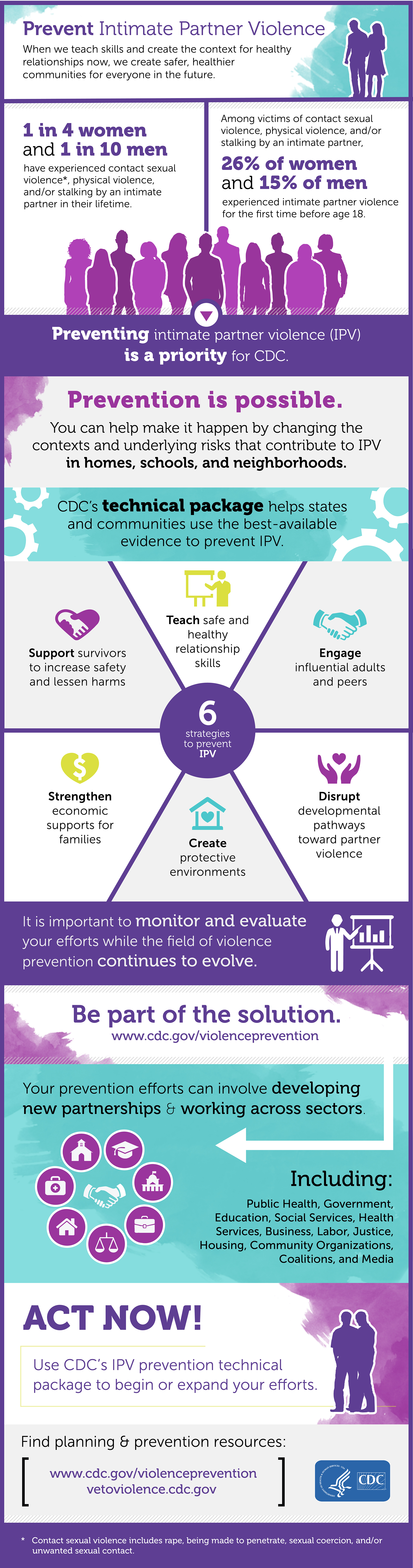 Intimate Partner Violence Infographic