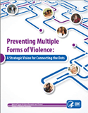 Preventing Multiple Forms of Violence: A Strategic Vision for Connecting the Dots