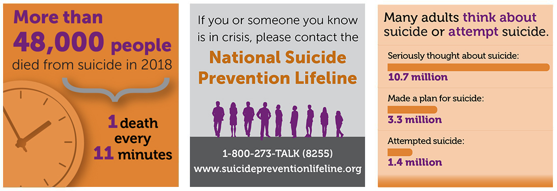 more than 47,000 deaths in 2017, resulting in about one death every 11 minutes. Every year, many more people think about or attempt suicide than die by suicide. In 2017, 10.6 million American adults seriously thought about suicide, 3.2 million made a plan, and 1.4 million attempted suicide.