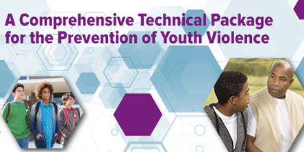 Youth Violence Technical Package