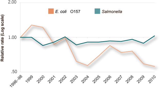 This line graph shows the change in the relative rates of E. coli O157 (STEC O157) and Salmonella infections from 1996 to 2010.  The relative rates of infection by year