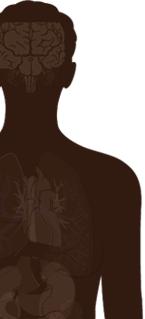 A person's silhouette