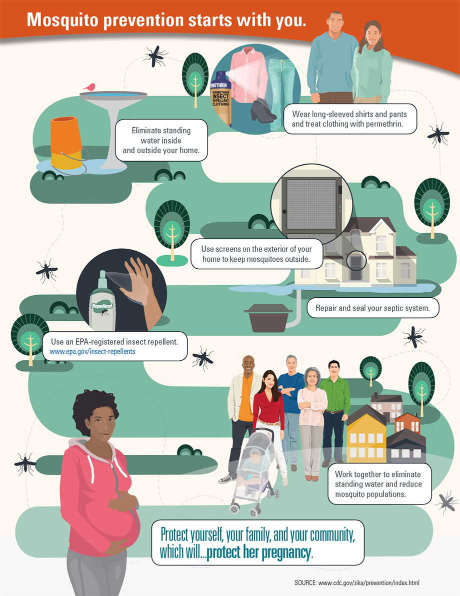 Graphic: Mosquito prevention starts with you