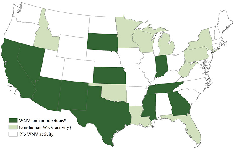 West Nile Virus Activity By State United States West Nile - Meningitis in the us epidemiology map