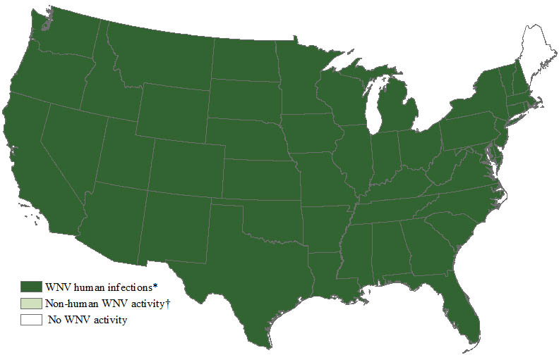 Map%20of the United States showing West Nile virus activity by state