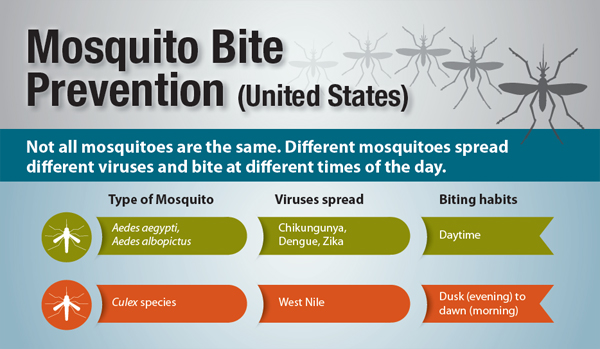 Mosquito Bite Prevention (United States) Not all mosquitoes are the same.  Different mosquitoes spread different viruses and bite at different times of the day.
