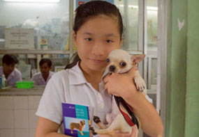 A young Vietnamese girl brings her puppy to the clinic to get the rabies vaccine.