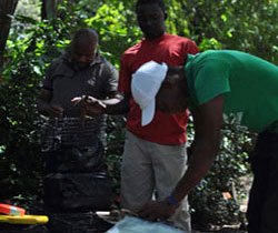 Team of rabies surveillance officers prepares traps for mongooses, another animal known to spread rabies in the Caribbean islands, to study the rabies burden in this animal population.