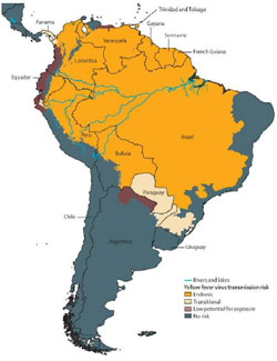 Thumbnail Map: South America showing areas at risk for Yellow Fever Transmision.